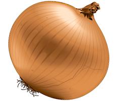 Oignon espagnol