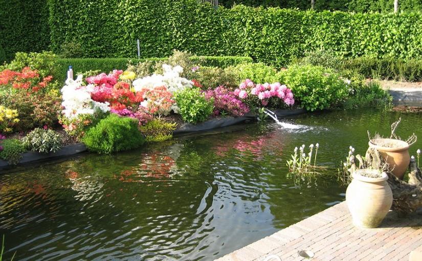 Bassin de jardin 2014 for Bache bassin