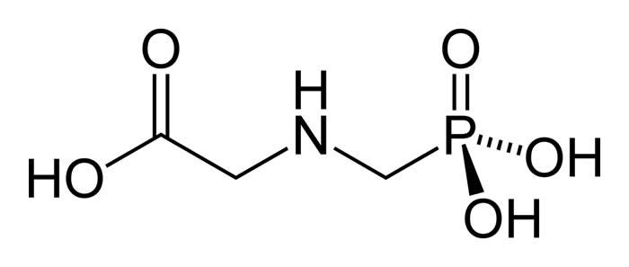 Glyphosate-2D-skeletal