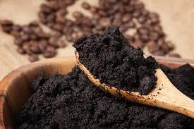 Le marc de café : un allié du potager