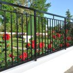 clôture fleurie de rosiers