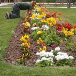 potager-entretien-printemps-jardin-des-plantes-bords-de-seine-9_gagaone