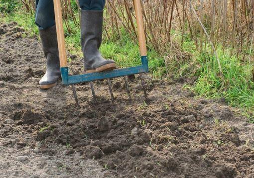 Conseils pour la préparation du sol de potager